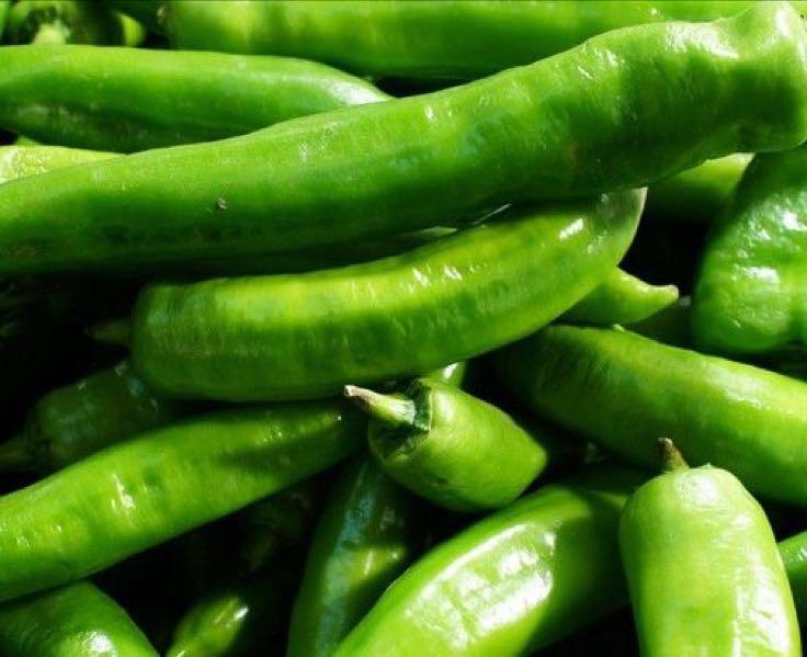 蔬菜青椒简笔画带颜色