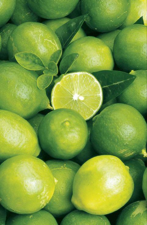 青柠檬 2~2.6两