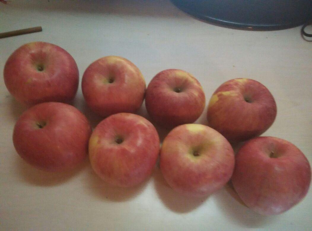苹果 红富士苹果_观赏网
