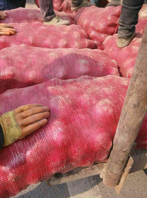 欧式红皮沙发图片