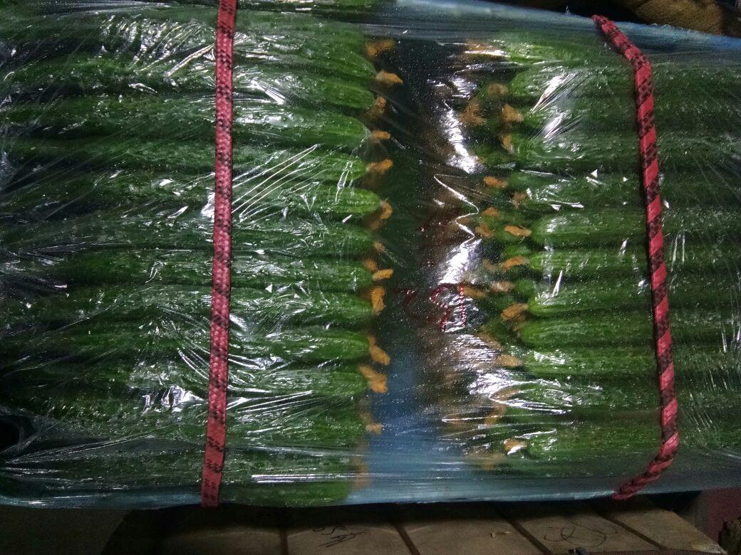 密刺黄瓜 22~25公分 干花带刺图片