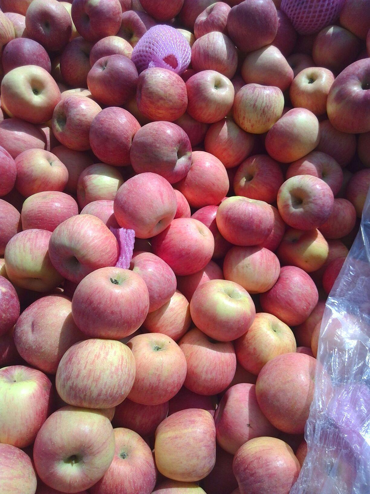 黄豆粘贴画苹果