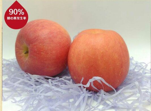 脆甜可口苹果 优质耐