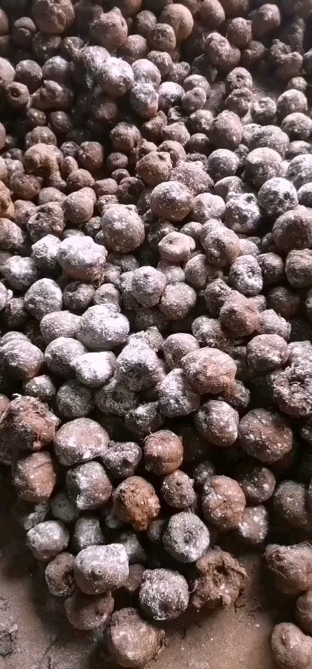 魔芋,全国发货,品种齐全周边配送到家,回收商品魔芋