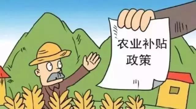 种地直补大改革,6月30日前发放!
