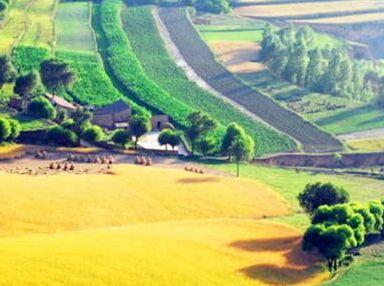 """农业供给侧改革:重点培育""""三类""""农民"""
