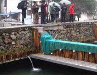 安徽黄山市全面推进山泉流水养鱼产业发展
