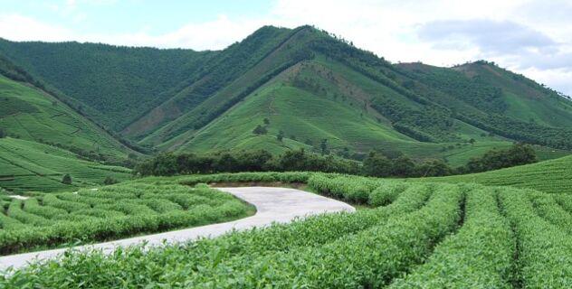 中央农村工作领导小组陈锡文谈三农短板及对策