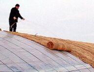农业部部署强降温雨雪天气防范工作