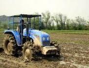 安徽抓好春耕备耕促绿色发展结构调整