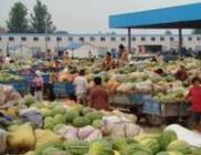 """3月10日""""农产品批发价格200指数"""""""