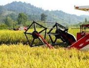 湖南省力促洞庭湖区率先实现农业机械化