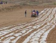 天水市农民专业合作社持续健康发展