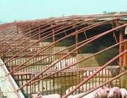 调结构 转方式 阜蒙县加快推进畜牧业转型升级步伐