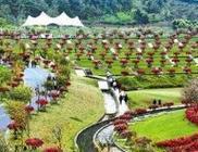 全国休闲农业和乡村旅游安吉倡议