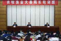 陈晓华:深化农村集体产权制度改革工作