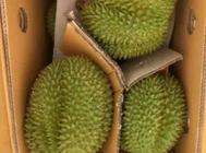 中国大陆海岸线最西南端县 水果来源广可一件代发