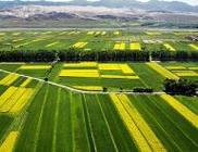 农科讲堂首期培训聚焦农业供给侧结构性改革