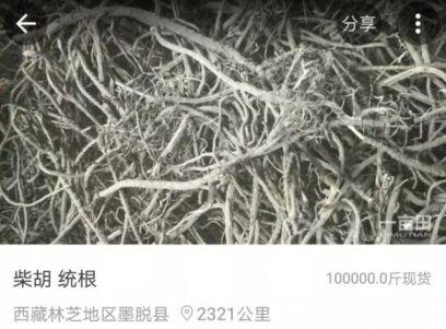 中国最后一个通公路的县 当地人手机APP卖农货