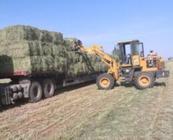 大力发展现代草牧业 助力环京津产业扶贫