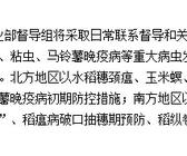 农业部11个督导组分赴主产区督促秋粮病虫防控