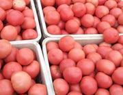 印度人为什么吃不起西红柿了?
