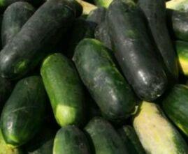 """8月31日""""农产品批发价格200指数"""""""