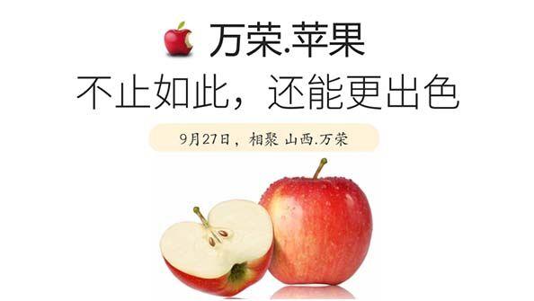 万荣苹果为啥能出口18个国家?