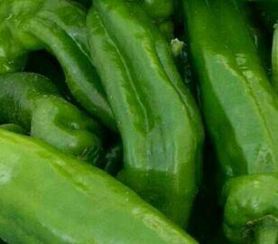 """9月21日""""农产品批发价格200指数"""""""