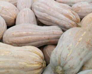 """9月25日""""农产品批发价格200指数"""""""