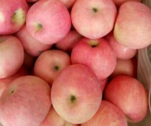 那年花开果正红,晋商的大苹果之道