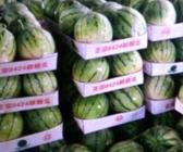"""9月28日""""农产品批发价格200指数"""""""