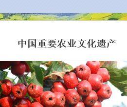 兴办乡村旅游正当时 农业部隆重推介游客慕名自来