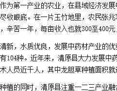 """抚顺三县""""农业+旅游""""成县域经济新亮点"""