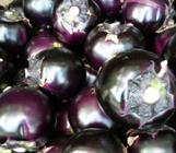 """10月13日""""农产品批发价格200指数"""""""