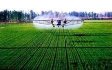"""全国""""互联网+""""新农人发展论坛"""