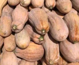 """12月29日""""农产品批发价格200指数"""""""
