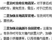 重庆市农委要求积极应对低温寒潮确保蔬菜供给