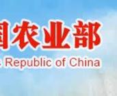 """农业部副部长张桃林:扎实做好""""三下乡""""活动"""