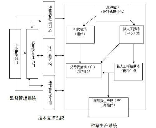 """重庆""""三合一""""模式打造生猪良繁体系"""