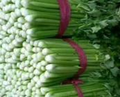 """1月18日""""农产品批发价格200指数"""""""