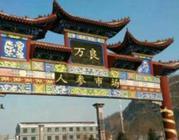 """吉林省正式启用""""长白山人参品牌""""新形象"""