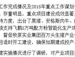 齐齐哈尔市畜牧兽医局调研克东县现代畜牧产业