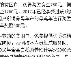 明水县出台畜牧产业精准扶贫新政策