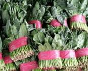 """4月2日""""农产品批发价格200指数"""""""