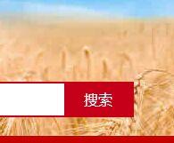 2018年吉林省新农村建设十大行动