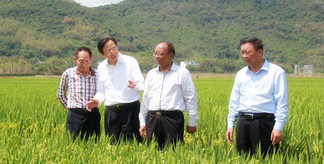 韩长赋:加强南繁基地建设 推进现代种业发展