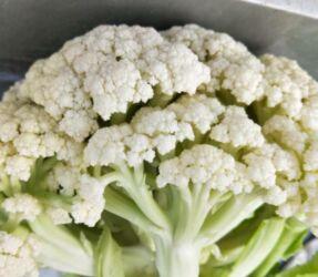 上周食用农产品价格运行平稳