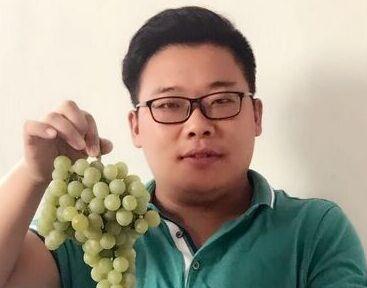 农产品电商达人在平度 网售20万斤葡萄显实力