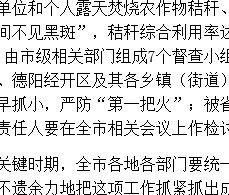 四川省德阳市全面启动秸秆禁烧和综合利用工作